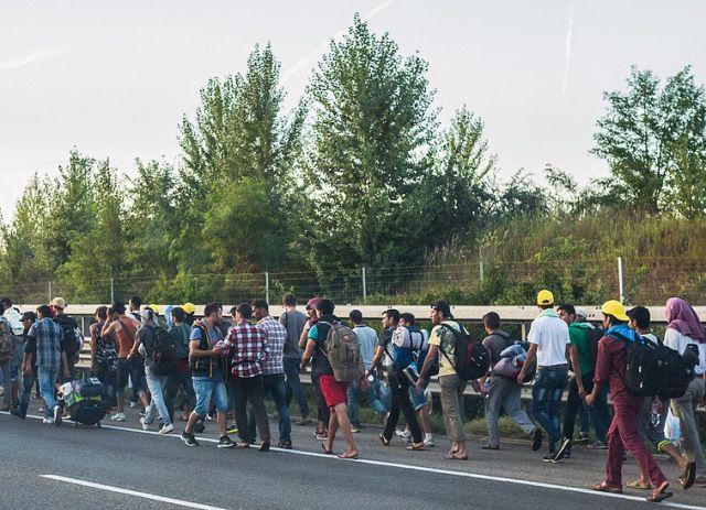 Bevölkerungsexplosion führt zu Asylanteninvasion – Schluss damit!